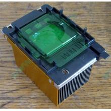 Радиатор HP p/n 279680-001 (socket 603/604) - Электроугли