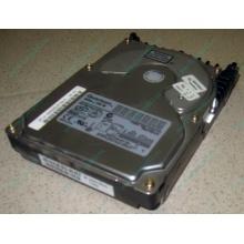 Жесткий диск 18.4Gb Quantum Atlas 10K III U160 SCSI (Электроугли)