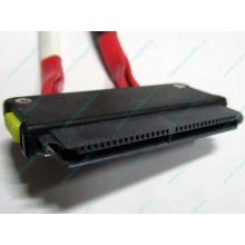 SATA-кабель для корзины HDD HP 451782-001 459190-001 для HP ML310 G5 (Электроугли)