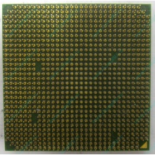 Процессор AMD Sempron 3000+ (1.6GHz) SDA3000IAA3CN s.AM2 (Электроугли)